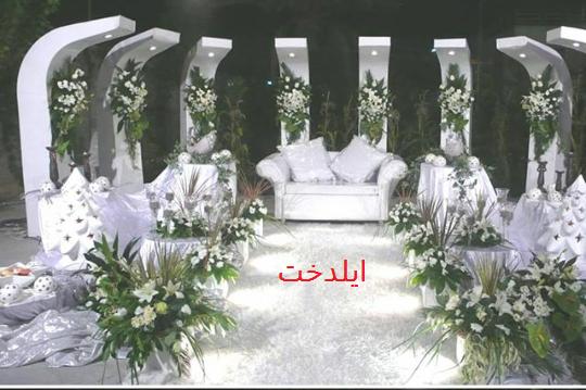 Photo of نمونه سفره عاج فیلی ایلدخت